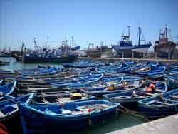 visitar Esauira flota pesquera