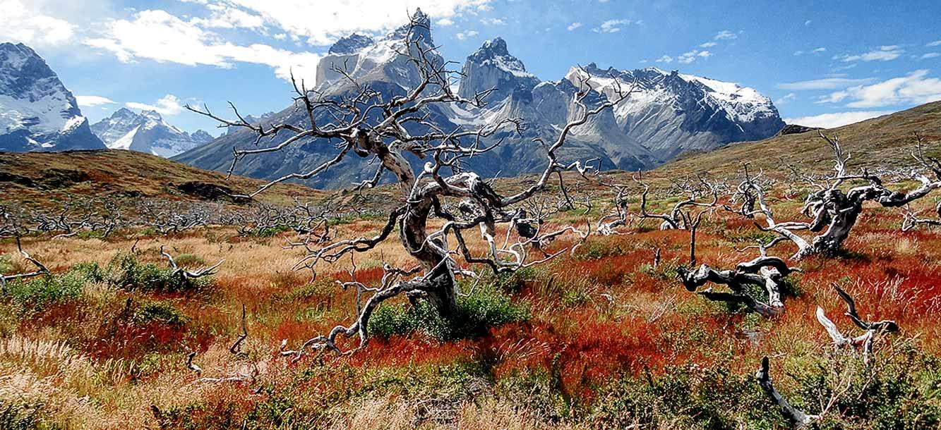 Parque Nacional Torres del Paine desde El Calafate y demás