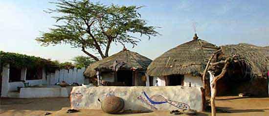 Un pueblo típìco de los bishnoi.