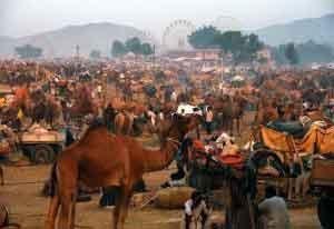El Puskhar Mela, la célebre feria de camellos de Pushkar