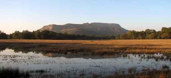 """El terreno de Bandhavgarh está quebrado por una sierra rocosa, intercalada por pequeñas praderas pantanosas, conocidas localmente como """"bohera"""""""