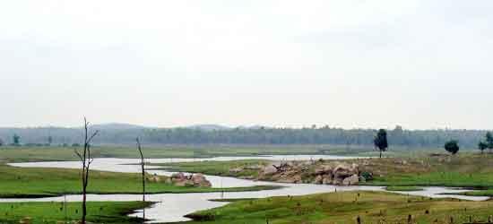 Parque Nacional Pench: Toma su nombre del río Pench, que serpentea por el parque de norte a sur.