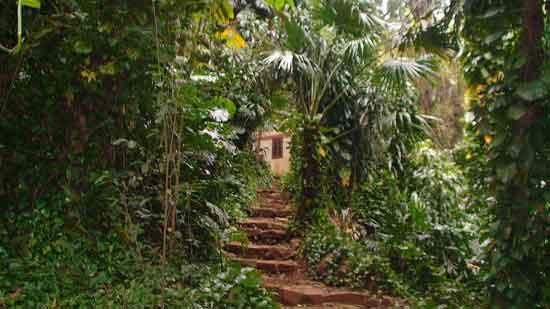 Museo Moisés Bertoni - Turismo activo Iguazu