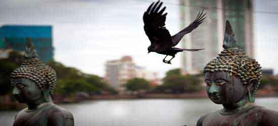 Colombo (la capital)