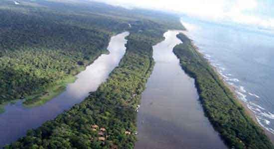 Parque Nacional Tortuguero: un mundo anfibio de canales, caños, ríos y lagunas que hierve de vida: un pequeño Amazonas.