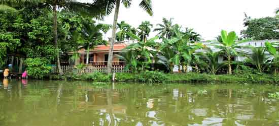 Los Backwaters de Kerala - Encanto rural