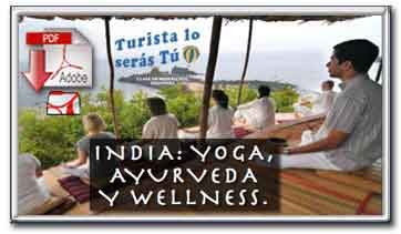 Descargar folleto pdf de la oferta India - Yoga, Ayurveda y Wellness