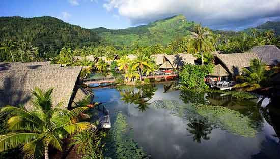 Construido a orillas del lagoon y junto a un lago natural cubierto de vegetación.