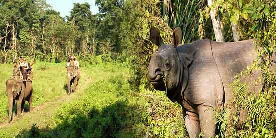 Chitwan - Viaje a Nepal en privado