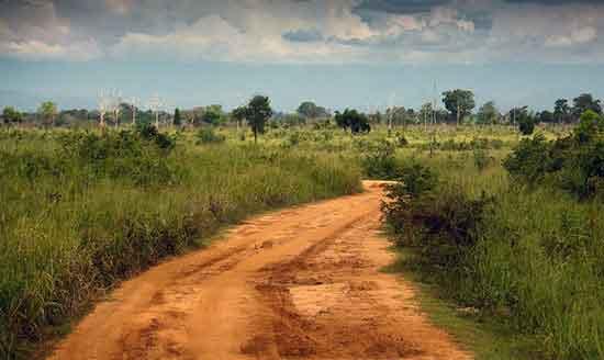 Udawalawa - Un pedazo de sabana africana trasplantado en Sri Lanka