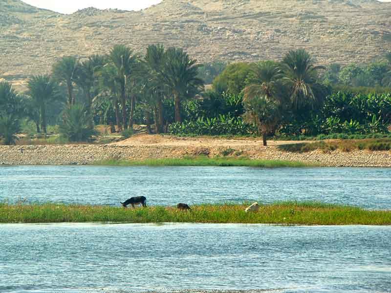 Crucero del Nilo