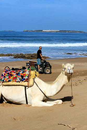 Playa de Esauira