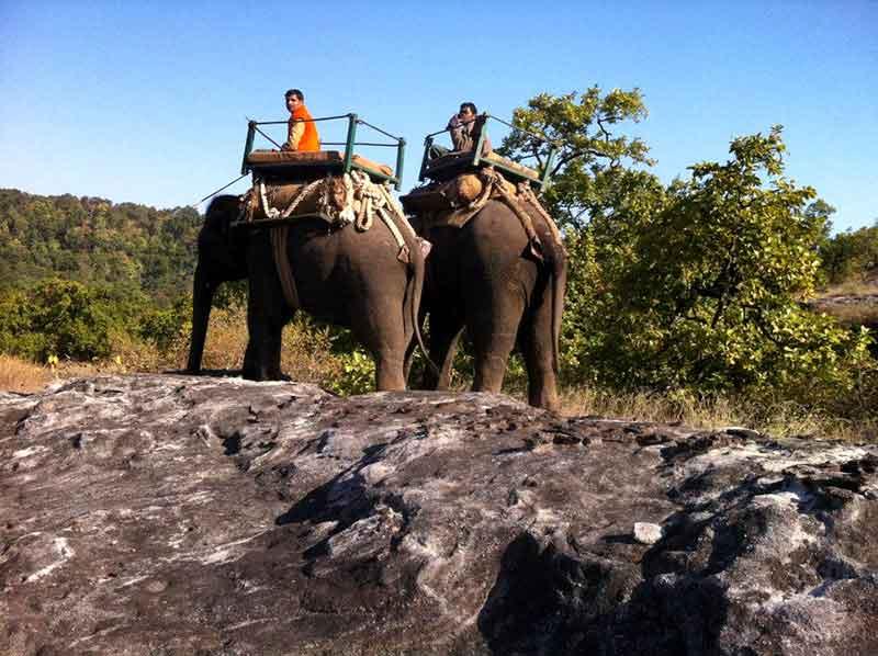 Safari en Bandhavgarh.