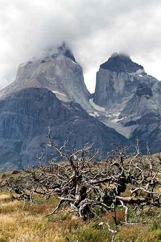 Cumbres del Macizo Paine