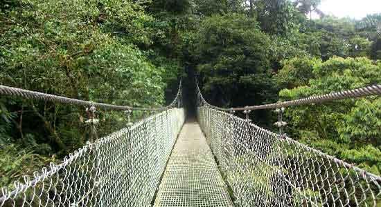 Puente colgante: Arenal - COSTA RICA CON ESTILO