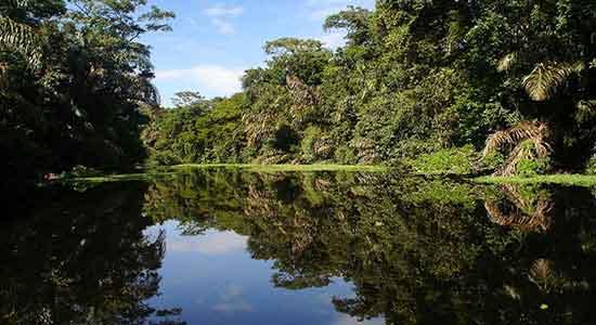 Tortuguero - COSTA RICA CON ESTILO