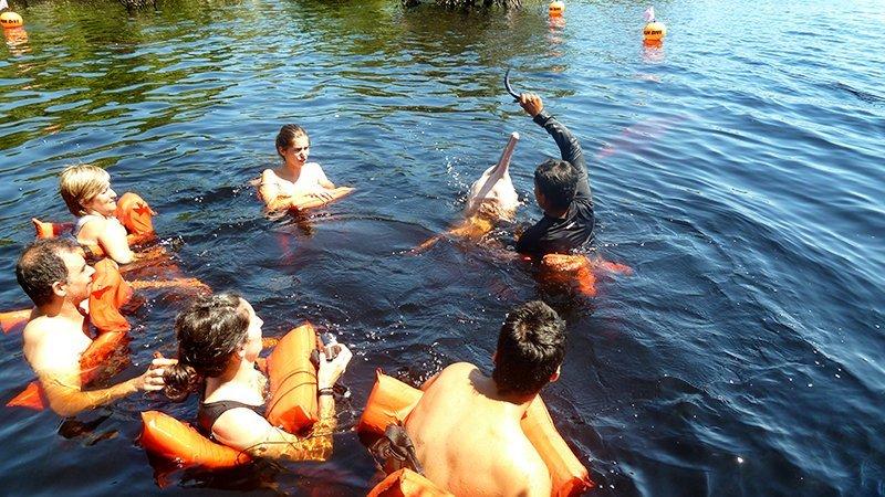 Baño con botos, delfines rosaceos de Amazonas