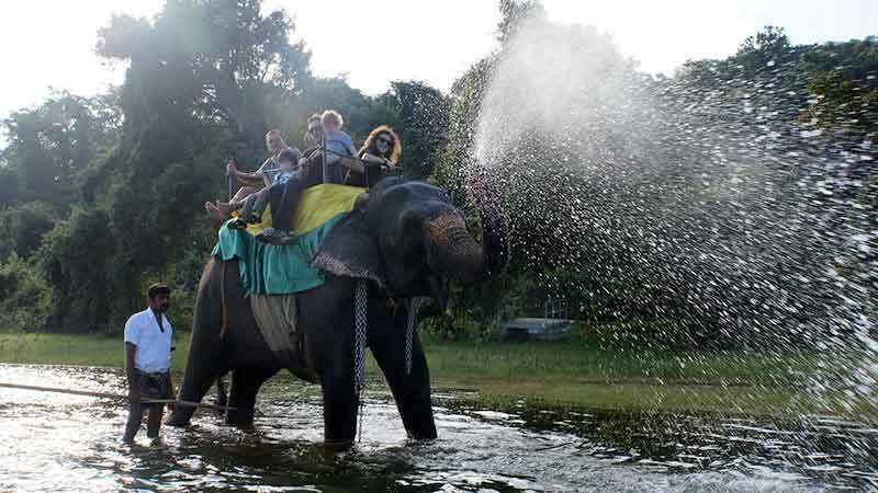 Paseo en elefante en Sigiriya