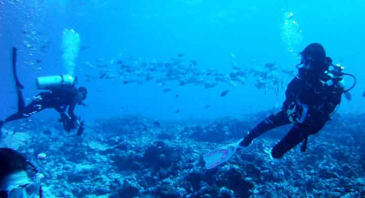 Buceo con Topdive en Rangiroa, Tiputa Pass - El viaje a Polinesia de Jorge y Ana