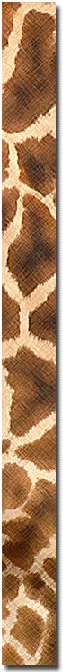 textura de jirafa de Botswana