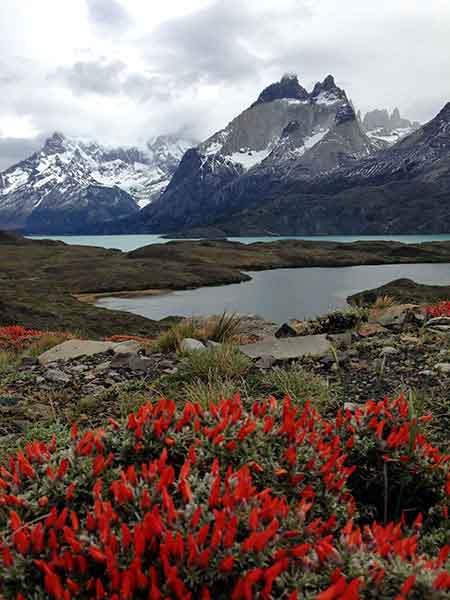 En el parque nacional Torres del Paine