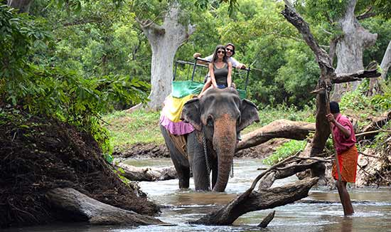 Habarana - Testimonio de luna de miel en Sri Lanka de David y Mónica