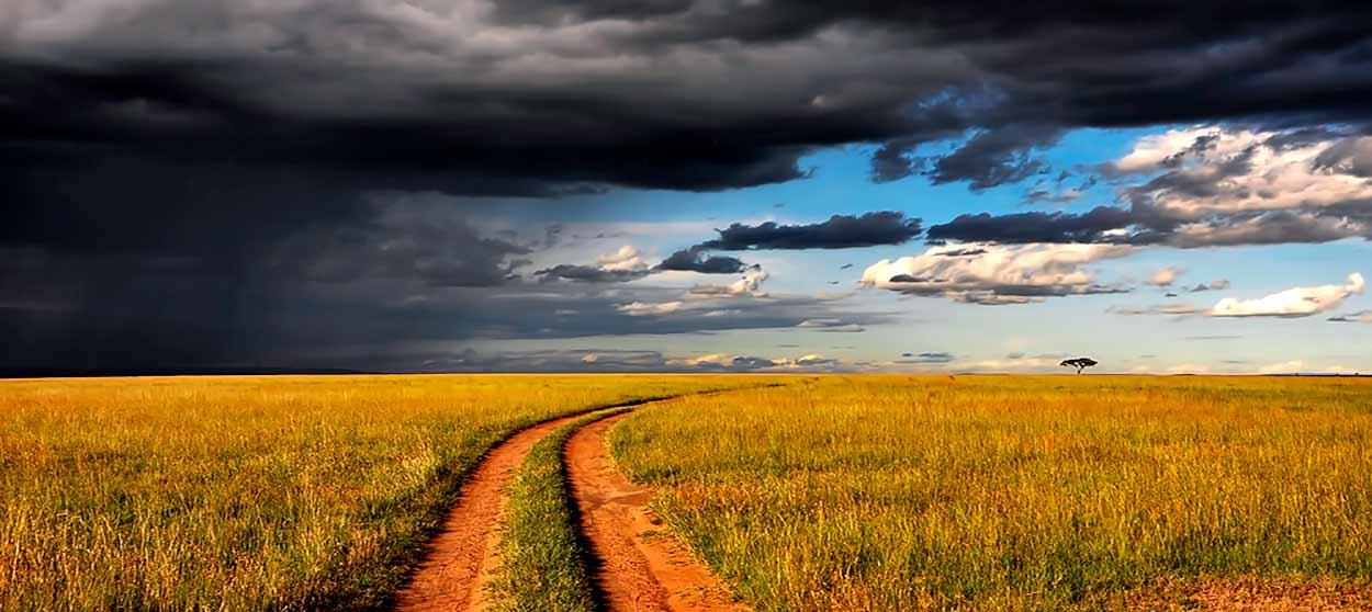 Qué ver en Kenia - Inmenso cielo de Masai Mara que invita a safari - Image by David Mark from Pixabay
