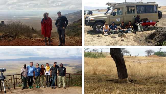 Opinión del Safari en Tanzania: montaje de 4 fotos de Ismael y Patri