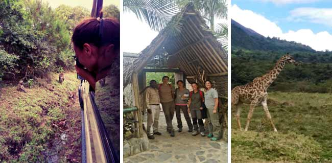 Opinión del Safari en Tanzania: montaje de 3 fotos de Ismael y Patri