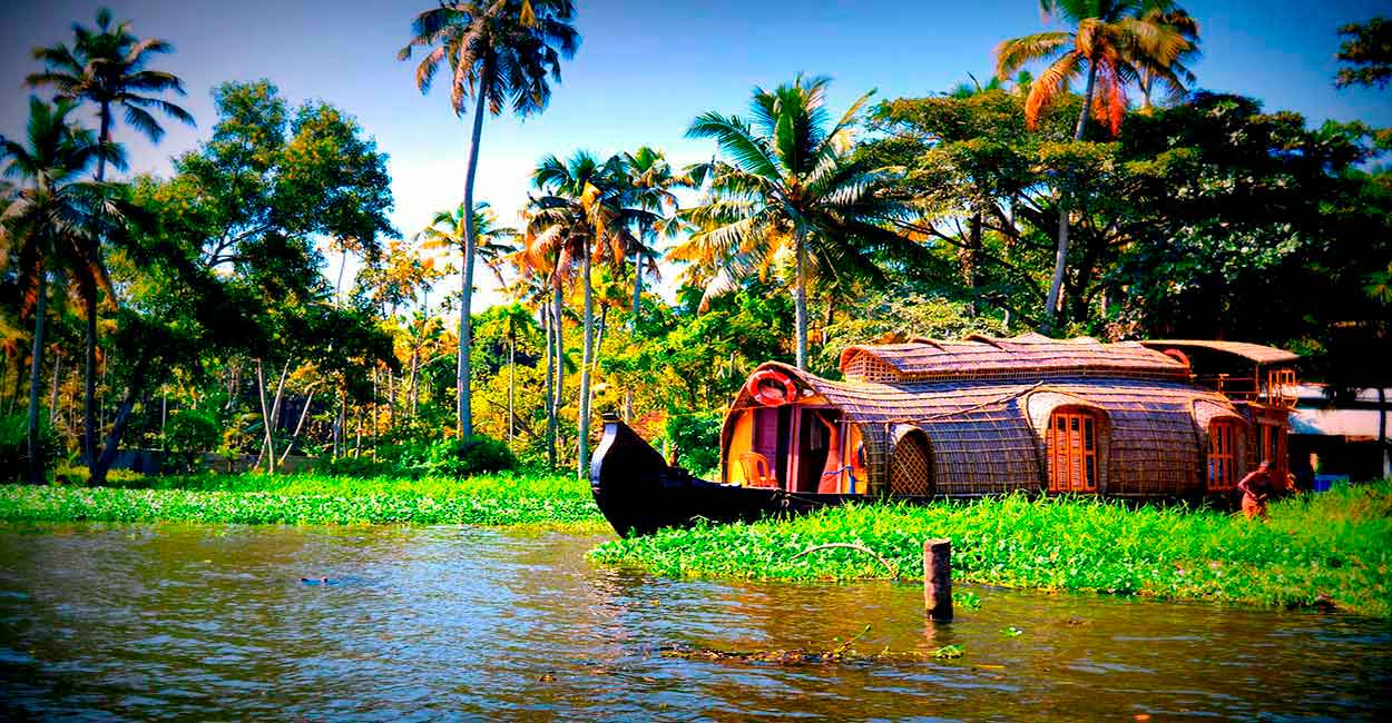 BACKWATERS: UN MUNDO ANFIBIO - QUÉ HACER Y VER EN EL SUR DE INDIA