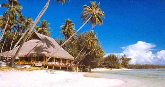 Opinión de Luna de Miel en Polinesia: Les Tipaniers Moorea