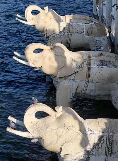 Experiencia del Viaje a India en privado de Ricardo, Teresa, Rosario, María José, Isaura e Isabel - elefantes