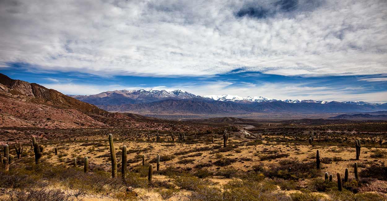 Parque Nacional de los Cardones - Salta y Jujuy, 12 razones para visitar Noroeste Argentino