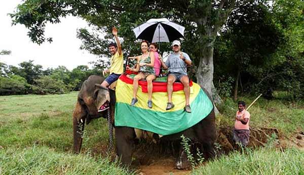 Testimonio de Viaje a Sri Lanka de Jorge, Flor, Javier e Ingrid: nuestros viajeros sagaces a lomos de un elefante