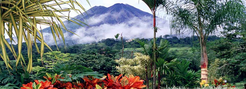 Costa Rica... No artificial ingredients!; By Arturo Sotillo from La Canada, CA, USA [CC BY-SA 2.0], via Wikimedia Commons