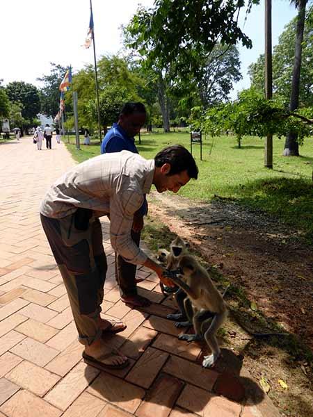 Viaje de novios a Sri Lanka y Maldivas de Andrea y Enrique 07