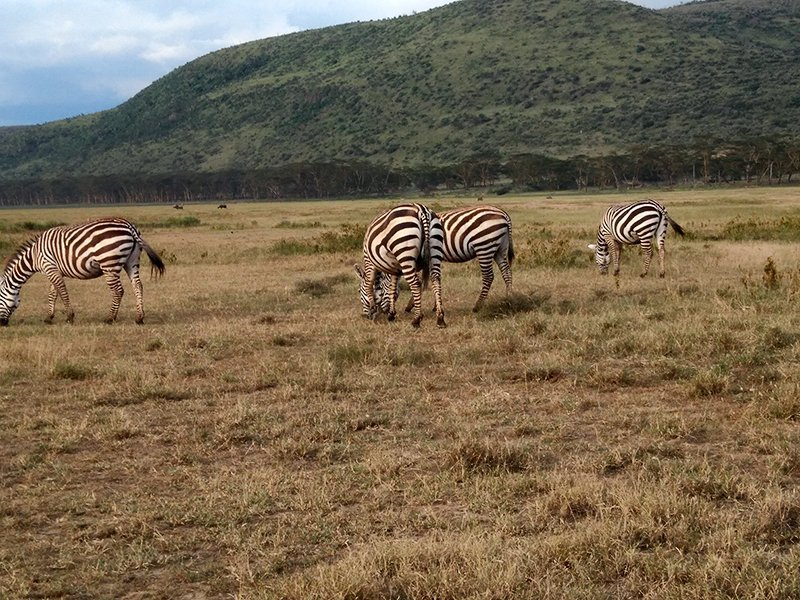 Viaje a Kenia y Uganda de Angelika, Marta, Nefo y Óscar 04