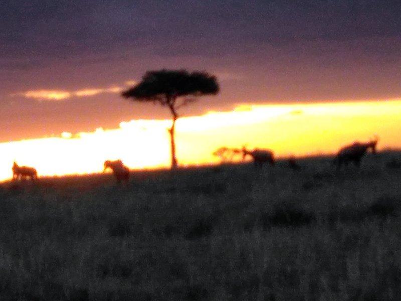 Viaje a Kenia y Uganda de Angelika, Marta, Nefo y Óscar 08