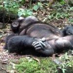 Viaje a Kenia y Uganda de Angelika, Marta, Nefo y Óscar 03