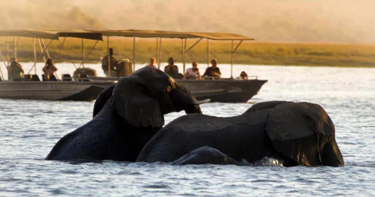 La imagen más emblemática del turismo en Botswana es del Delta del río Okavango, que forma en Botswana el mayor delta interior del planeta