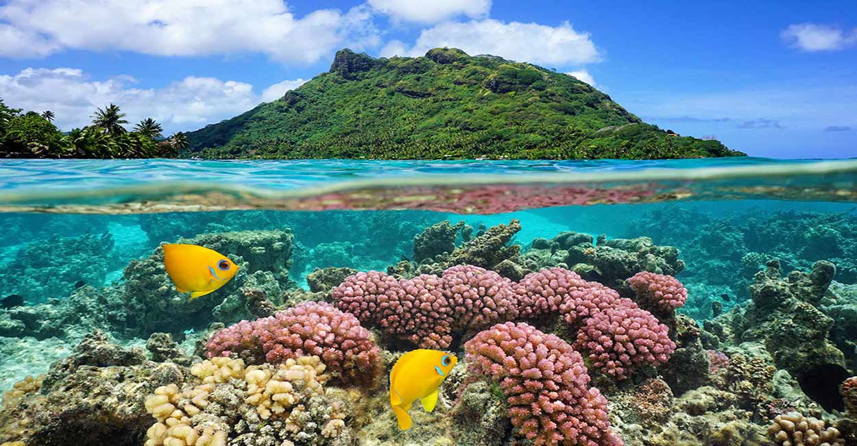 Huahine, la gran desconocida del turismo de Polinesia. Muy salvaje, con un relieve muy accidentado y poco explotada turísticamente