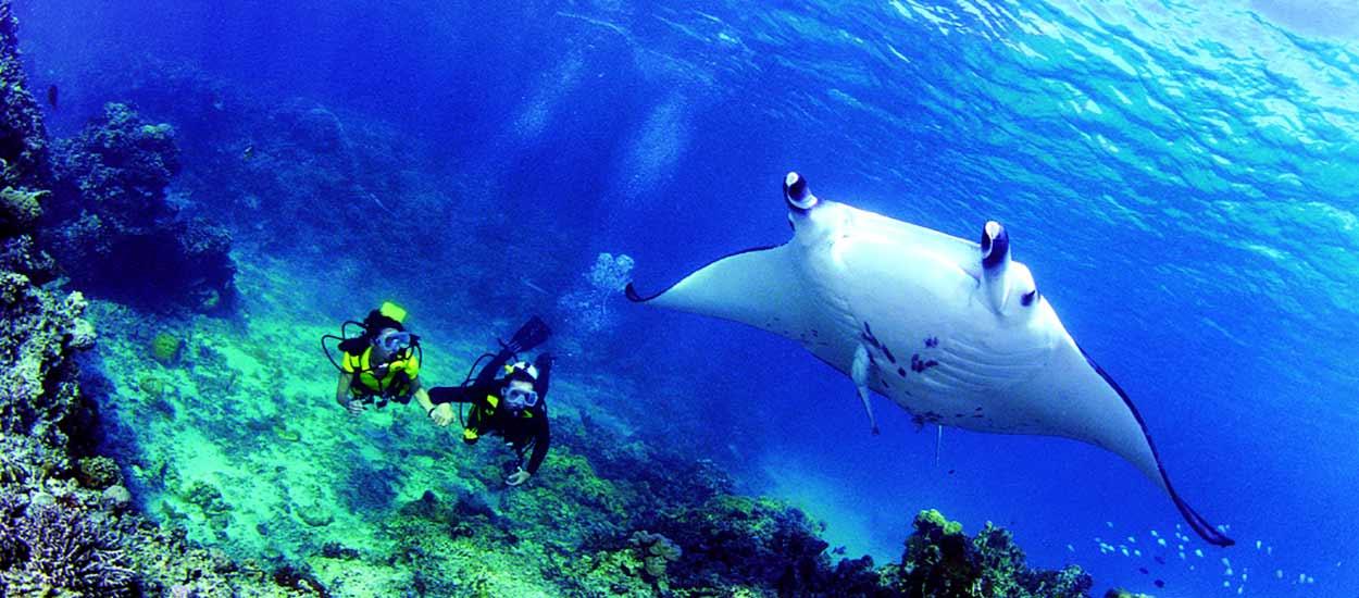 Rangiroa, el destino más visitado de las Tuamotu, gracias a la riqueza submarina de su barrera de coral.