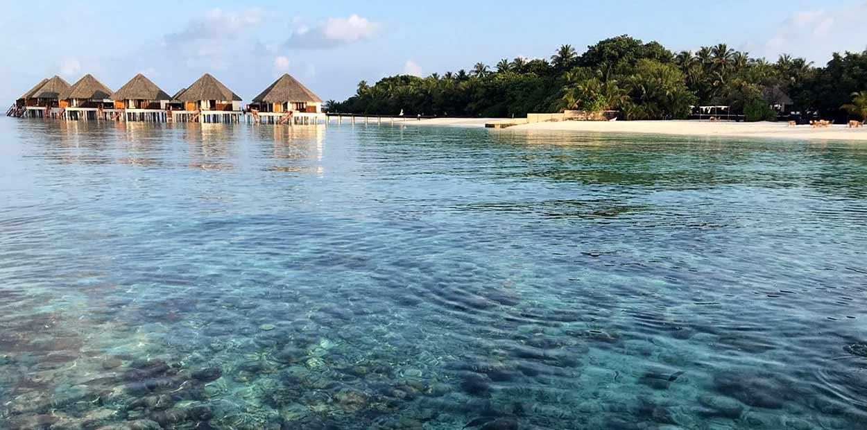 La elección del hotel o resort depende de lo que uno busque como objetivo principal del turismo de Maldivas (sólo estancia de ocio y esnórquel tranquilo, una zona especialmente idónea para el buceo o para el surf…) y, sobre todo, del presupuesto con que se cuente