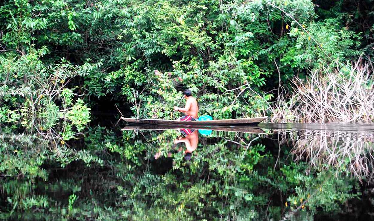 Río Negro, visita obligatoria en un crucero del Amazonas y uno de los mayores afluentes