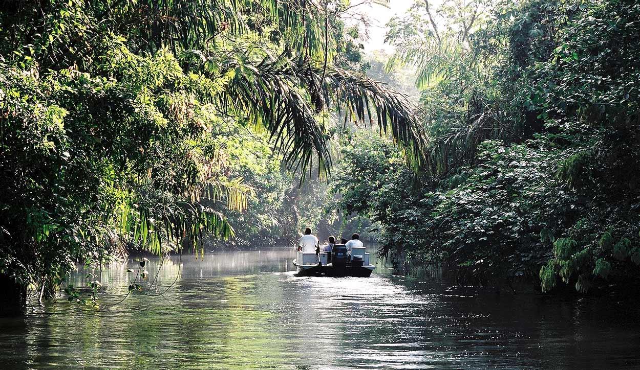Parque Nacional Tortuguero es la mayor reserva natural del Caribe e integra mar, selva y humedales, una de las joyas de turismo de Costa RicaBy Lars0001 (Own work) [Public domain], via Wikimedia Commons