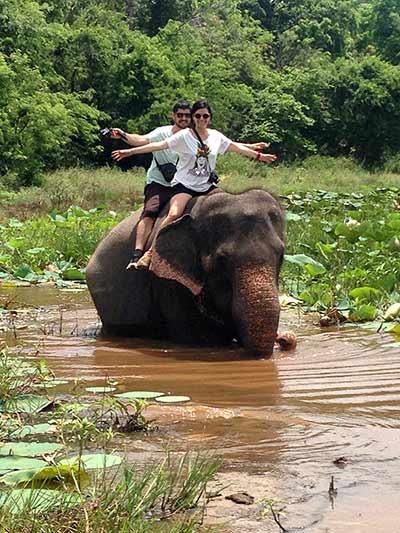 Valoración de viaje a Sri Lanka y Maldivas de María y David: a lomos de un elefante en Sri Lanka