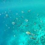 Viaje a Sri Lanka y Maldivas de Mari, Elena, Diego y José Carlos 03