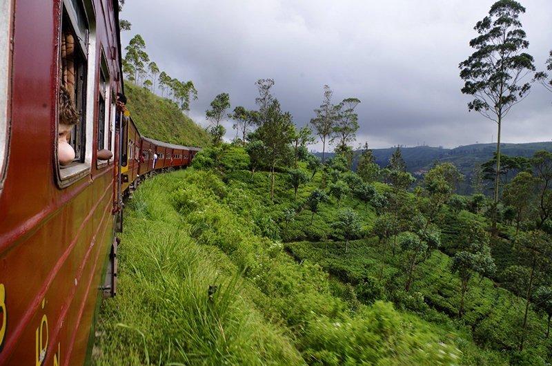 Viaje a Sri Lanka y Maldivas de Mari, Elena, Diego y José Carlos 11