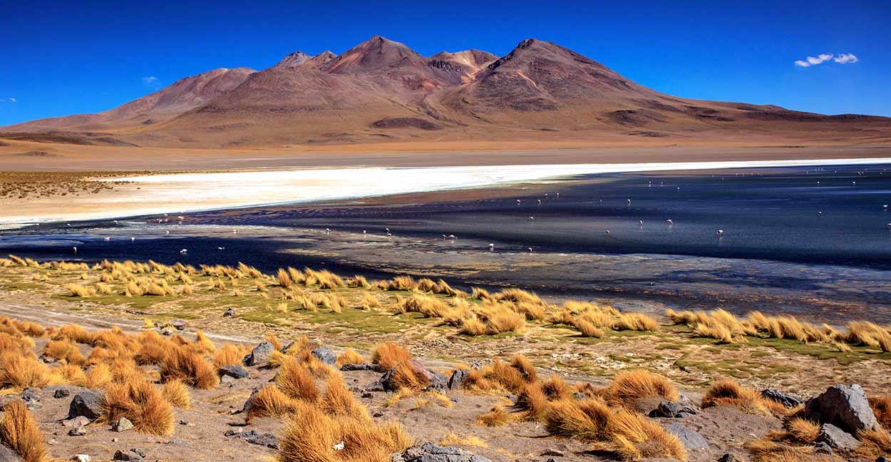 NOROESTE ARGENTINO, UYUNI Y ATACAMA - Salar de Uyuni - Laguna Canapa - Murray Foubiste
