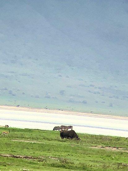 Safari en privado de Tanzania de Yajaira y Pino 35